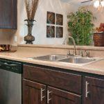 Home exterior repair & maintenance